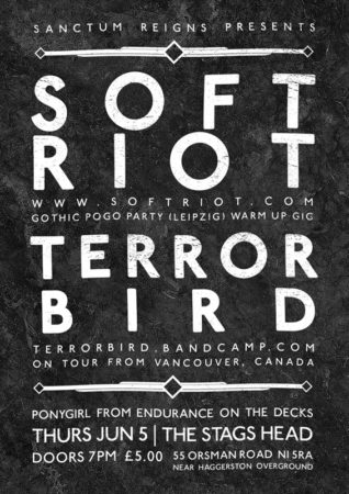 SOFT RIOT + TERROR BIRD / A6 Flyer